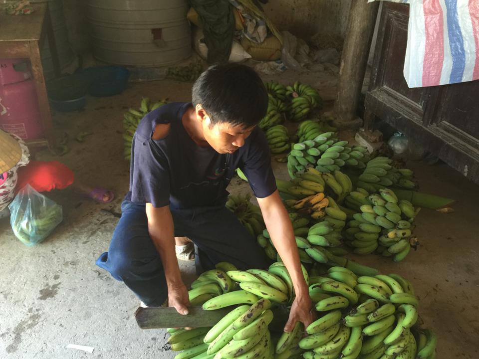 Bước đường hoàn lương của một thương gia nông sản - Ảnh 2