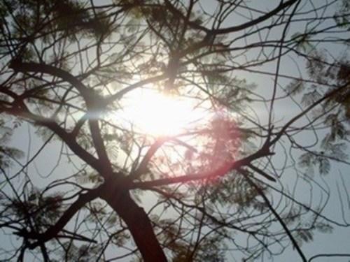 Dự báo thời tiết hôm nay 26/10: Bắc Bộ nắng nóng, Trung Bộ mưa dông - Ảnh 1