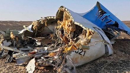 Nga bất ngờ đề nghị FBI giúp điều tra vụ máy bay rơi - Ảnh 1
