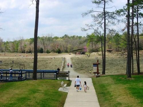 Công viên chứa đầy kim cương cho khách tự đào mang về - Ảnh 10