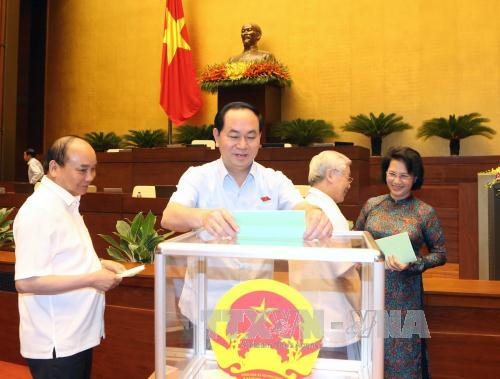 Ông Trần Đại Quang được giới thiệu bầu Chủ tịch nước - Ảnh 1
