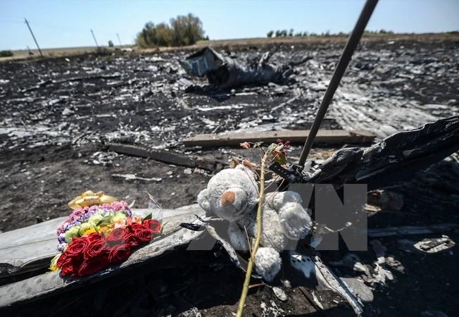 Hà Lan thông báo thời điểm công bố kết quả điều tra vụ MH17 - Ảnh 1
