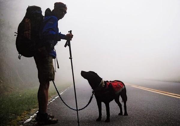 Chú chó dẫn chủ nhân bị mù đi phượt khắp thế giới - Ảnh 1