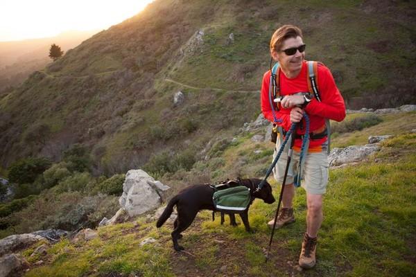Chú chó dẫn chủ nhân bị mù đi phượt khắp thế giới - Ảnh 5