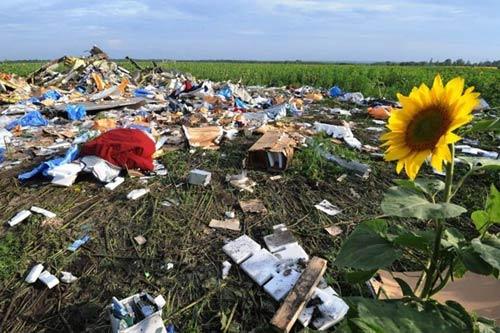 Chùm ảnh thế giới tưởng niệm 1 năm vụ MH17 bị bắn rơi - Ảnh 7