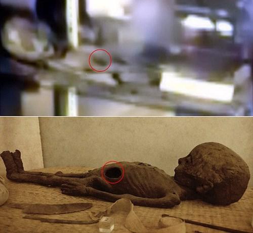 Lộ bằng chứng mới về sự tồn tại của người ngoài hành tinh - Ảnh 3