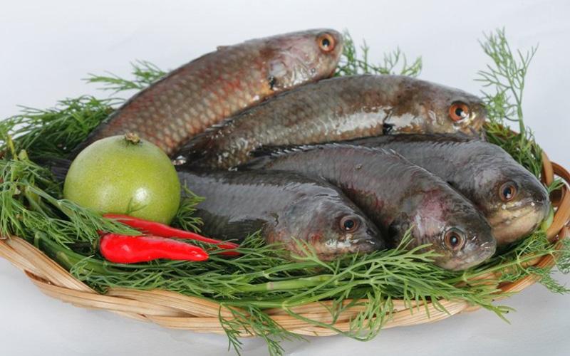 Cá rô kho tộ thơm cay cho bữa cơm ngày mưa  - Ảnh 2