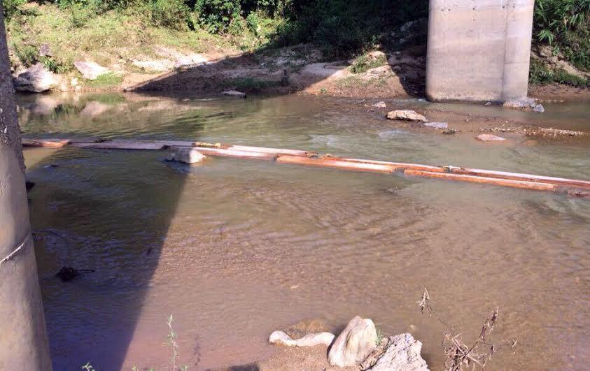Nghệ An: Lâm tặc rải hàng trăm súc gỗ pơ mu lớn dọc suối - Ảnh 2