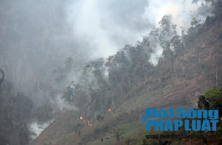 Toàn cảnh vụ cháy rừng suốt 5 ngày tại Nghệ An - Ảnh 2