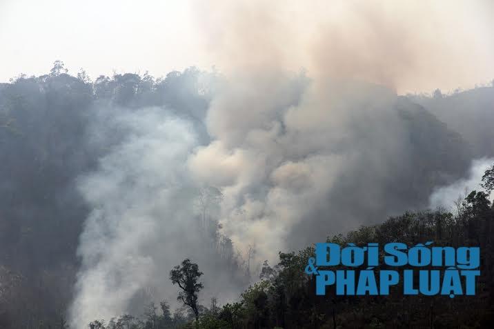 Toàn cảnh vụ cháy rừng suốt 5 ngày tại Nghệ An - Ảnh 1