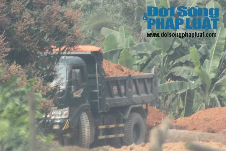 Phớt lờ chỉ đạo của huyện, xã để khai thác đất tràn lan - Ảnh 4