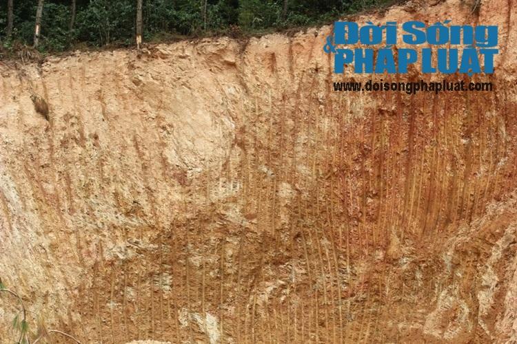 Nghệ An: Rừng núi bị xẻ thịt tan hoang cạnh QL48 - Ảnh 4