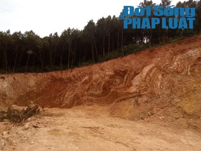 Nghệ An: Rừng núi bị xẻ thịt tan hoang cạnh QL48 - Ảnh 1