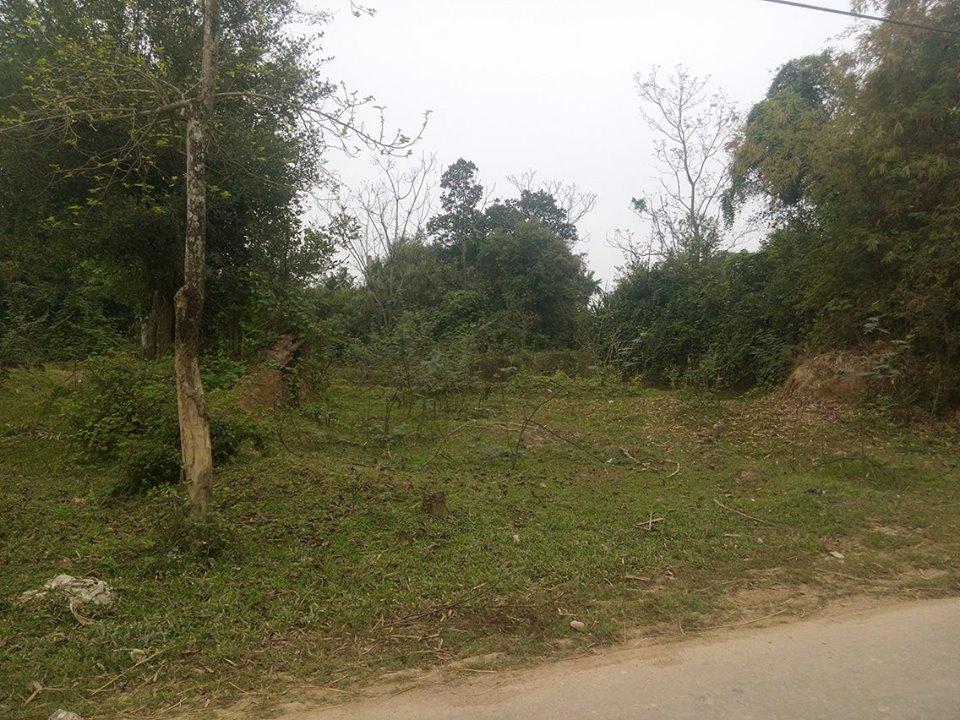 Hà Tĩnh: Thu hồi đất không đúng chủ sử dụng, UBND huyện thừa nhận sai sót - Ảnh 1