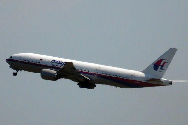 Hành khách máy bay MH17 vẫn sống sót khoảng 90 giây sau vụ nổ - Ảnh 8