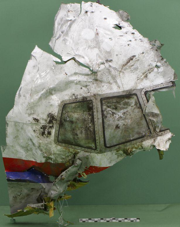 Hành khách máy bay MH17 vẫn sống sót khoảng 90 giây sau vụ nổ - Ảnh 12