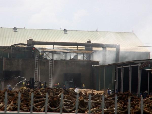 Lại cháy nhà máy chế biến gỗ trong KCN Nam Đông Hà - Ảnh 1