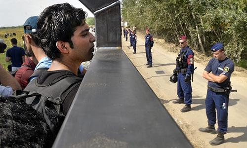 Hungary xây hàng rào chặn người di cư ở biên giới với Romania  - Ảnh 1