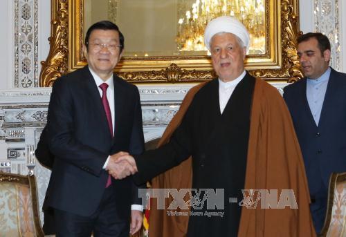 Chủ tịch nước Trương Tấn Sang hội kiến Chủ tịch Quốc hội Iran  - Ảnh 1