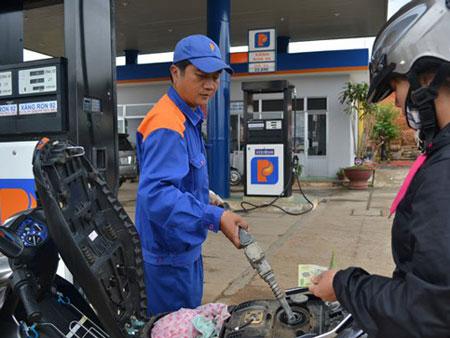 Lãnh đạo Thanh tra Chính phủ lên tiếng về sai phạm tại Petrolimex - Ảnh 2