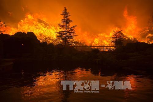 Hàng nghìn người sơ tán do cháy rừng ở California - Ảnh 1