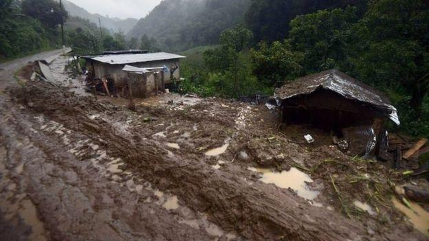 Bão càn quét Mexico, ít nhất 38 người thiệt mạng - Ảnh 1