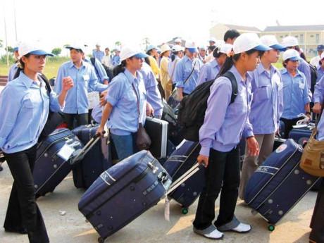 Gần 1.000 lao động Hà Tĩnh đang cư trú bất hợp pháp tại Hàn Quốc - Ảnh 1