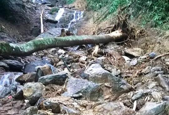 Danh tính 2 người chết, 5 người mất tích vụ lở núi kinh hoàng tại Thanh Hóa - Ảnh 2