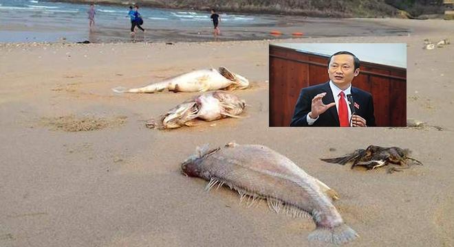 Phó Chủ tịch UBND tỉnh Hà Tĩnh có thiếu kỹ năng sống? - Ảnh 1