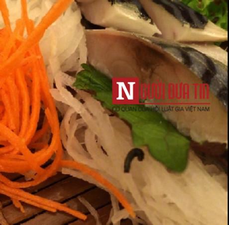 """Phát hoảng """"sinh vật lạ"""" bò lổm ngổm trên đĩa cá tại nhà hàng Nhật Bản - Ảnh 1"""