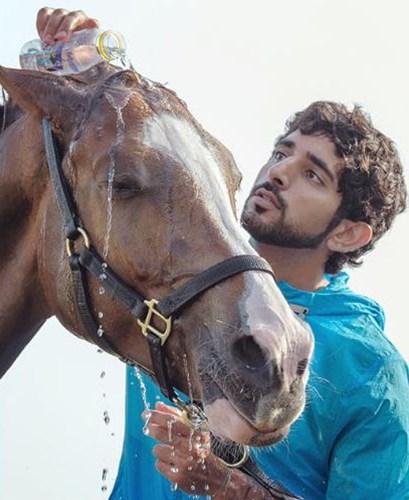 Hoàng tử Dubai đẹp trai, tài giỏi khiến các cô gái mê mẩn - Ảnh 4