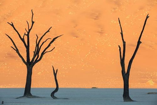 16 cảnh đẹp siêu thực như cảnh ngoài hành tinh - Ảnh 11