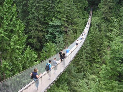 15 cây cầu điên rồ và đáng sợ nhất thế giới – Phần 1 - Ảnh 10