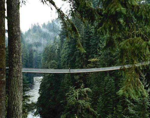 15 cây cầu điên rồ và đáng sợ nhất thế giới – Phần 1 - Ảnh 9
