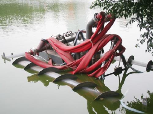 Hà nội mạnh tay chi gần 30 tỷ làm sạch Hồ Hoàn Kiếm - Ảnh 1