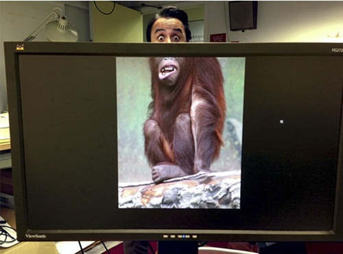 Chết cười với những hình ảnh hài hước của dân văn phòng - Ảnh 9