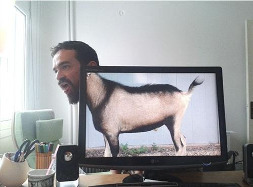 Chết cười với những hình ảnh hài hước của dân văn phòng - Ảnh 11