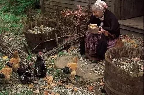 Cuộc sống thần tiên của nữ họa sĩ 92 tuổi  - Ảnh 7
