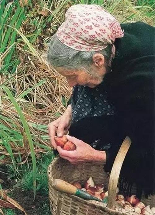 Cuộc sống thần tiên của nữ họa sĩ 92 tuổi  - Ảnh 17