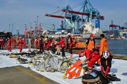 Indonesia ấn định thời điểm công khai kết luận về vụ rơi máy bay Lion Air - Ảnh 2