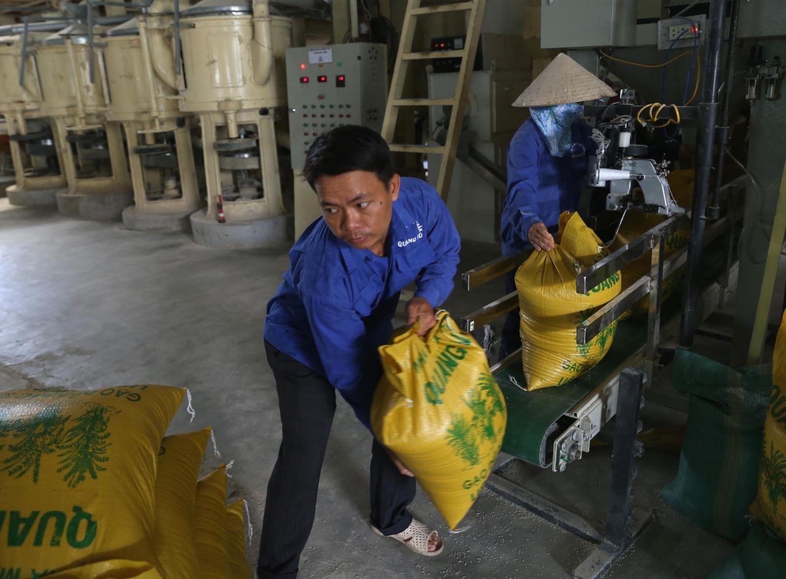 Được 'cởi trói', hạt gạo dự tính mang về cho Việt Nam hơn 3 tỷ USD - Ảnh 1