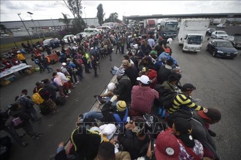 Bỉ: Phản đối hiệp ước di cư toàn cầu, một loạt các bộ trưởng từ chức - Ảnh 2