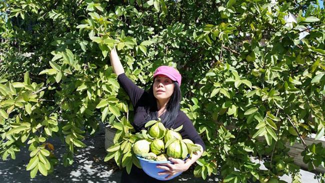 Cơ ngơi sang trọng của sao hài Việt Hương ở Mỹ - Ảnh 4