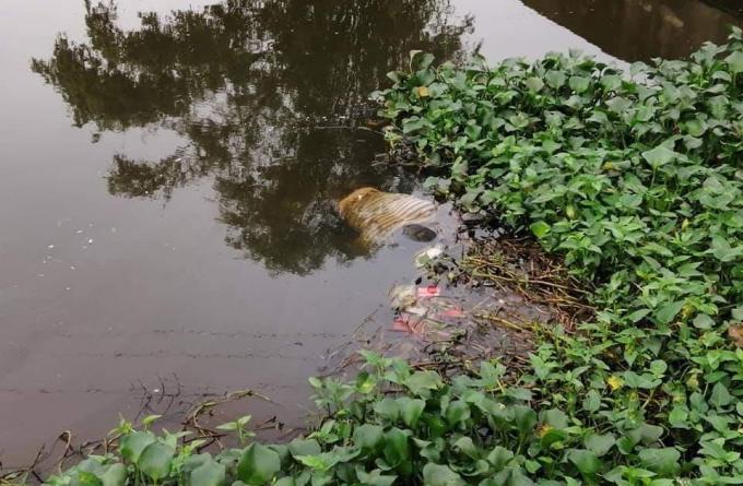 Kinh hoàng phát hiện thi thể người đàn ông trên kênh nước - Ảnh 1