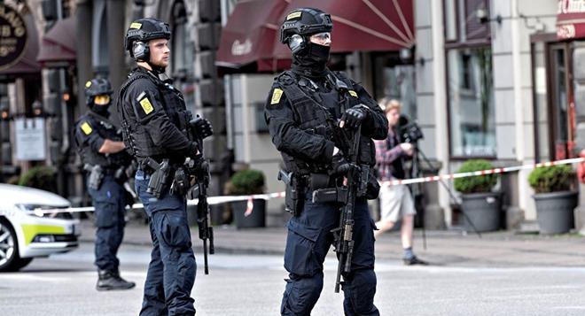 Đan Mạch bắt 20 kẻ khủng bố Hồi giáo cực đoan định tấn công người dân - Ảnh 2