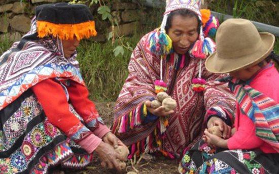 Có xông đất đầu năm, mê tín bói khoai tây là tục đón năm mới trên thế giới - Ảnh 8