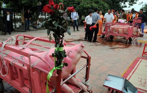 Làng Ném Thượng vẫn tổ chức nghi lễ chém lợn năm Kỷ Hợi 2019 dù kín đáo hơn - Ảnh 1