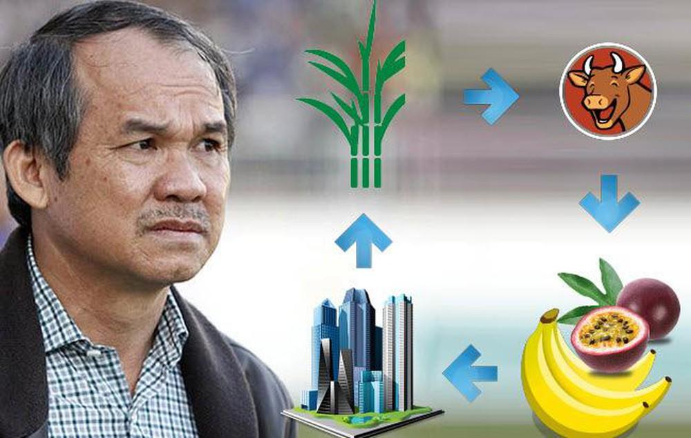 Dứt bỏ duyên nợ với bất động sản, bầu Đức mơ trở thành người trồng chuối hàng đầu châu Á - Ảnh 1