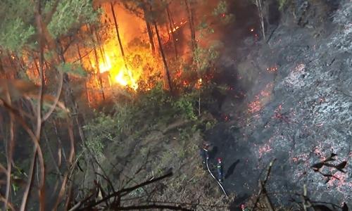 Hé lộ nguyên nhân hàng loạt vụ cháy rừng xảy ra cùng một ngày ở Huế - Ảnh 1