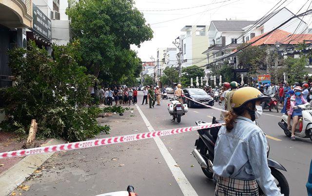 Quy Nhơn: Lạc tay lái, ô tô lao lên vỉa hè tông đổ cây, 2 người thương vong - Ảnh 3